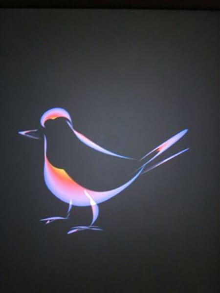En fugl, malet på Ipad i frihånd