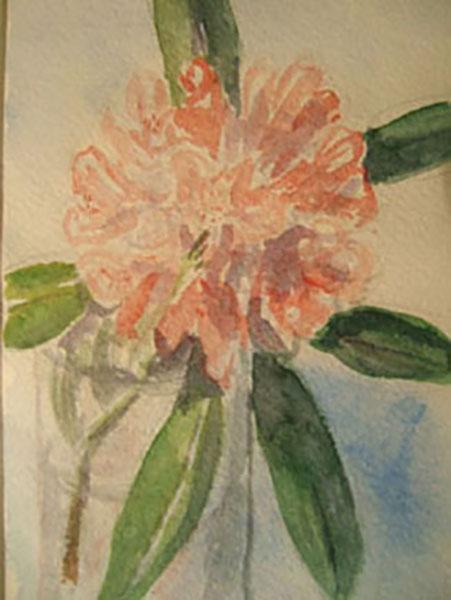 Rhododendron fra mit sommerhus, akvarel, ca.2008