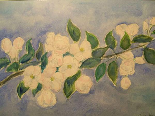 Æblegren, akvarel,1988