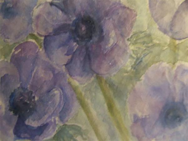 Franske anemoner, akvarel