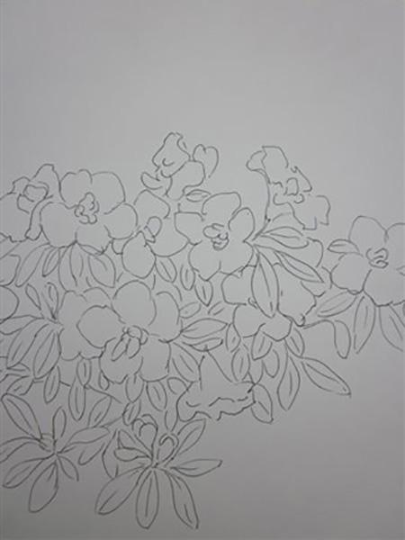 Rhododendron, tush, ca. 2004