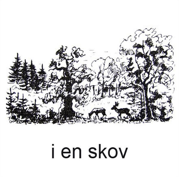 En skov