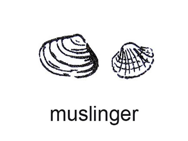 Muslinger