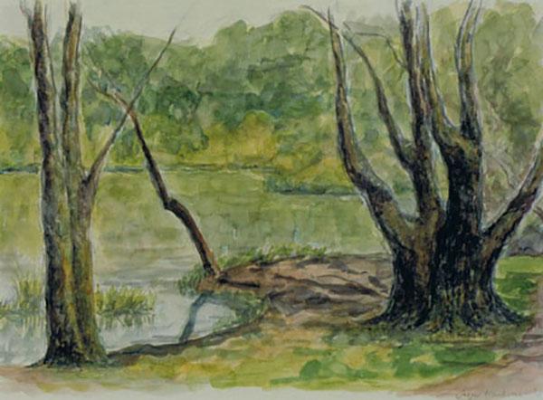 Bøllemosen i Charlottenlund, akvarel, ca. 1998