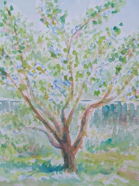 Mit blommetræ, live, akvarel, ca. 1986