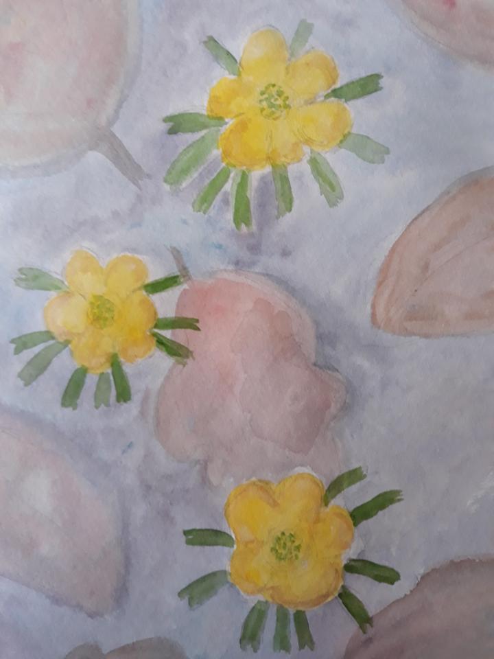 Erantis en forårsdag, akvarel, 2021