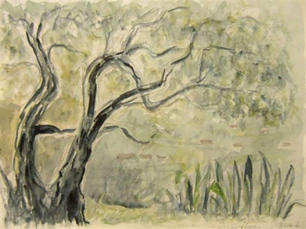 Competa, Spanien, oliventræer - akvarel