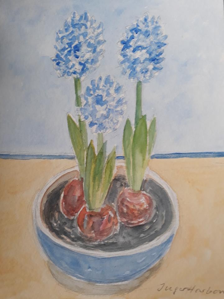 Blå hyacinter, akvarel, 2021