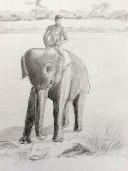 Elefant, blyant