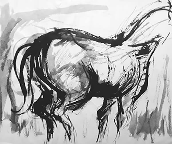 Hest, tush, 1960