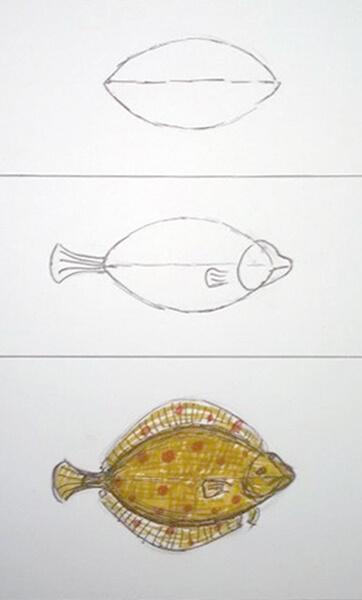 Sådan tegner man en fladfisk. Rødspætte