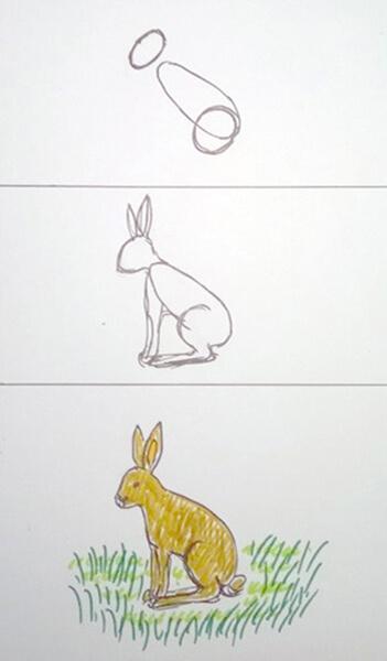 Sådan tegner man en hare