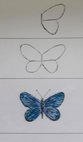 Sådan tegner man en sommerfugl - Blåfugl