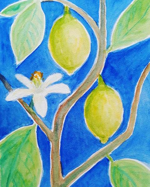 Mit citrontræ, akvarel, 2019