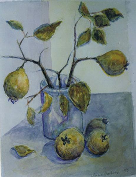 Kvæder fra min have, akvarel, ca. 1998